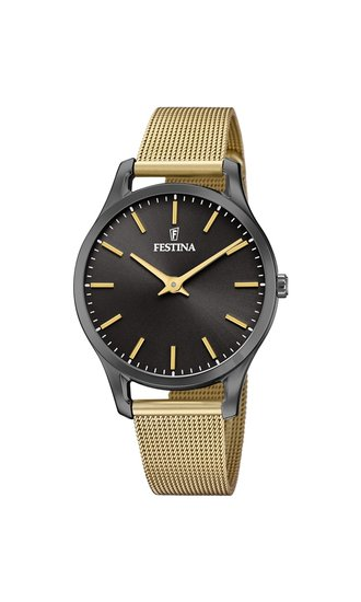 Photo: Zegarek FESTINA 20508/1